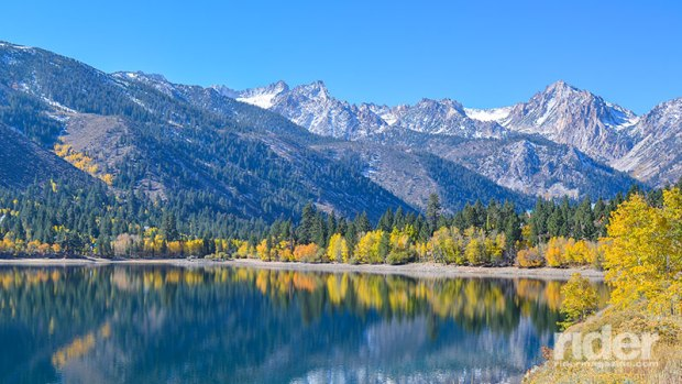 Colorful fall trees displaying their beauty around Twin Lakes.