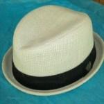Triliby Hat