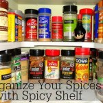 Organize Your Spices with Spicy Shelf
