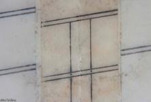 Canòdrom Meridiana - Detall (macro). Desplaçament del celo i brutícia