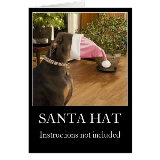 Funny dog Santa hat Christmas greeting card