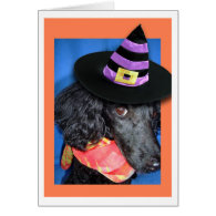 Happy Halloween Party Hat Poodle Greeting Cards