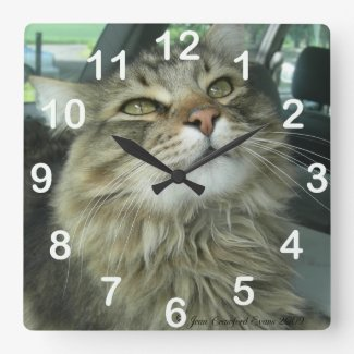 Maine Coon kitty Round Clocks