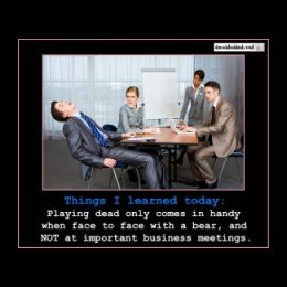 Playing Dead At The Office