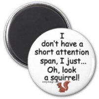 Short Attention Span Squirrel Refrigerator Magnets