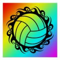 Volleyball stuff from Smartasses