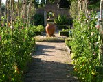 How to Find the Perfect Pergola for Your Garden (11 photos)