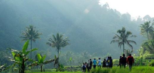 Perjalanan Menuju Lokasi Green Camp | Sumber Foto: Yayasan RMI