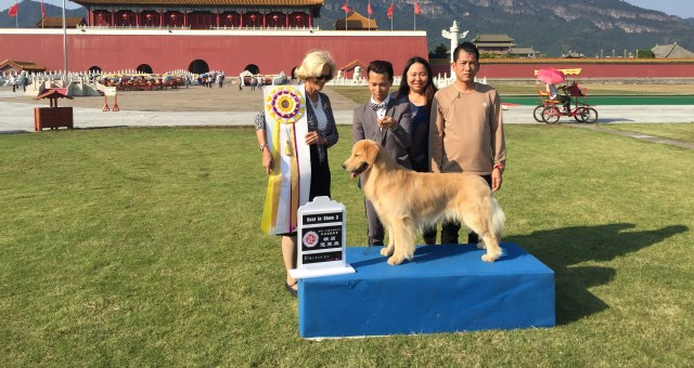 Best in Show,China