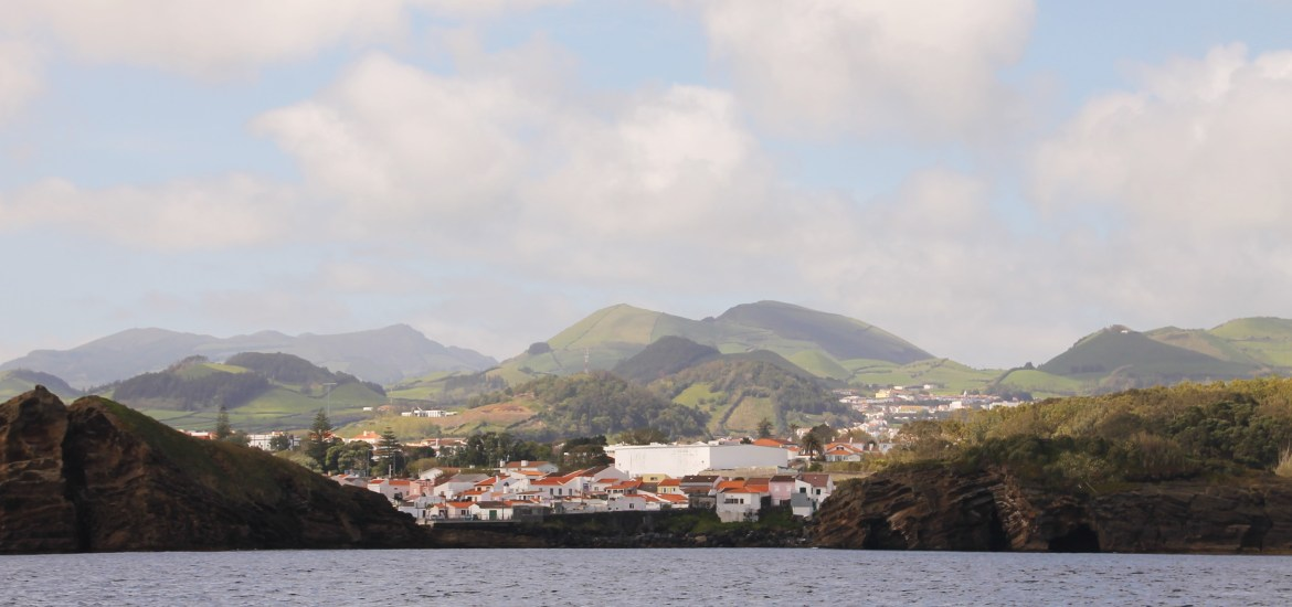 Eco-Friendly Whale Watching & Dolphin Swims - Azores Futurismo Tours
