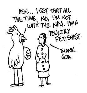 (person in chicken suit) I'm not with the NPA. I'm a poultry fetishist.