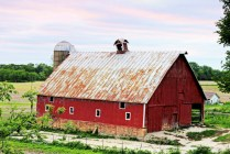 """Old Barn"" Airhart Road Savanna 1"