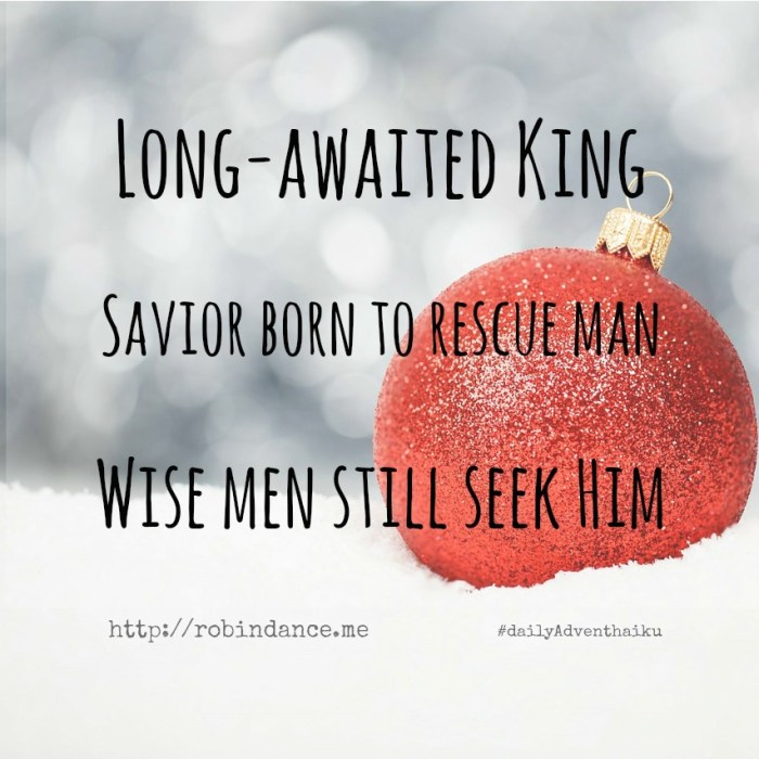 Long-awaited King - Christmas Poem
