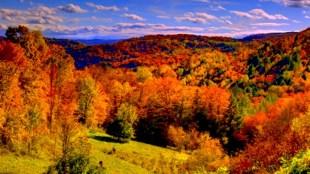 Valley of fall colors in Vermont (foto nature.desktopnexus.com)