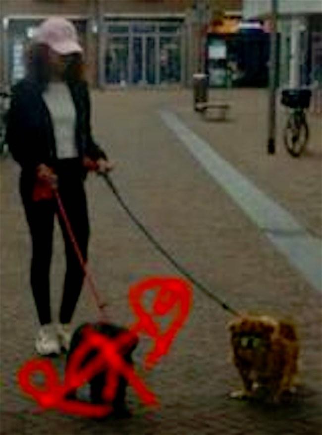 Peter's dochter wandelt even met mijn hondjes (foto Facebook)