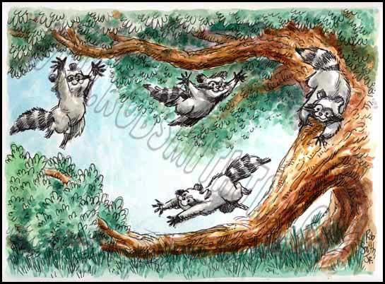 2009-1203-art-raccoonplay1