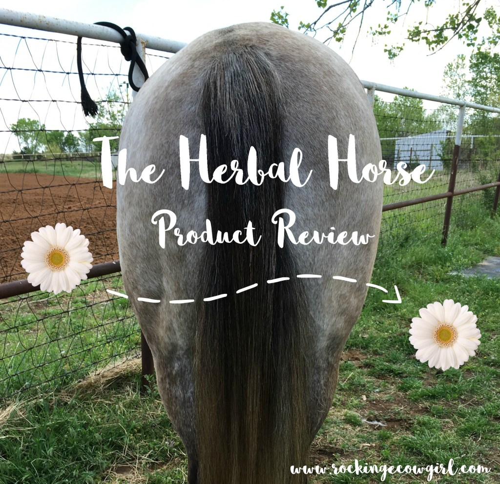 THH Review