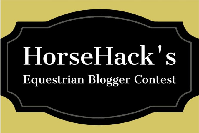 horsehackcontest