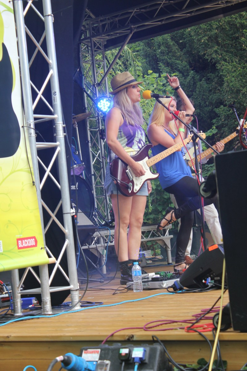 Rock in the Priory 2016 DefunkT