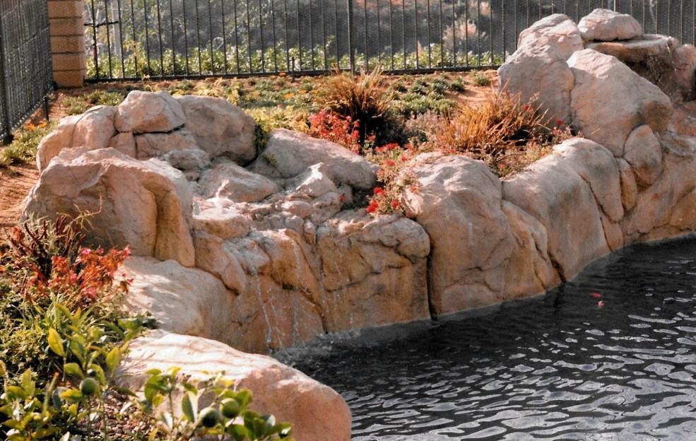 swimming pools fish ponds (45)