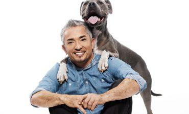 Говорещият с кучета Cesar Millan избира български домашни любимци за шоуто си