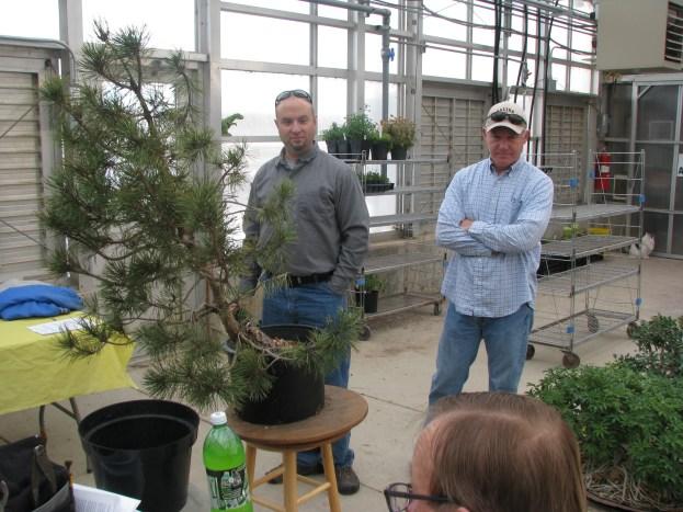Larry leading tree analysis
