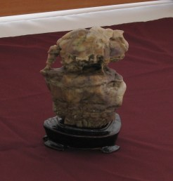 Gobi Water Stone