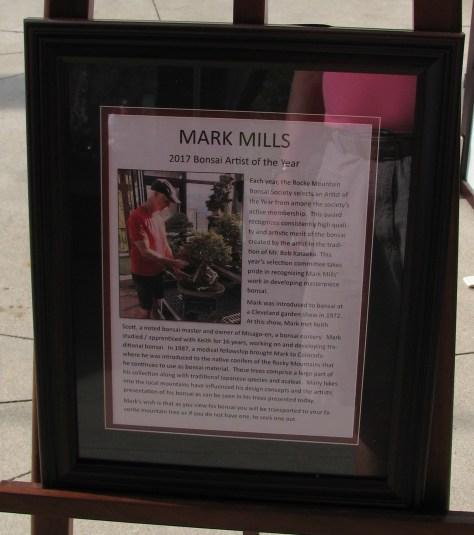 Mark Mills 2017 Artist of Year