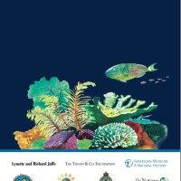 GUIDE TO BAHAMAS MARINE PROTECTED AREAS