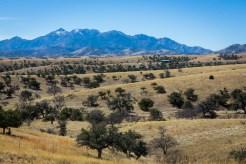Arizona_Tucson_Coronado National Forest_0874