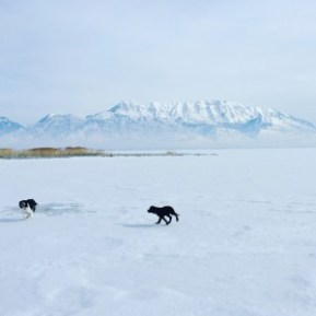 Utah Lake Frozen