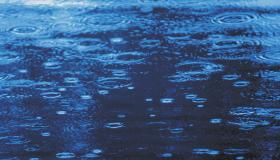 Rain drops on ground
