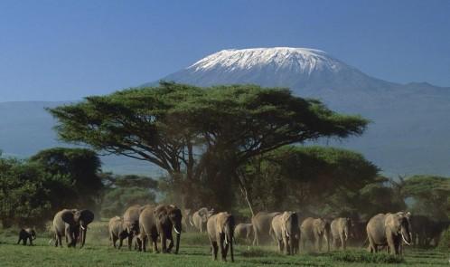 mount-kenya-national-park