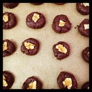 Raw 'Brain' Brownies