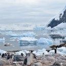 The last great wilderness Antarctica