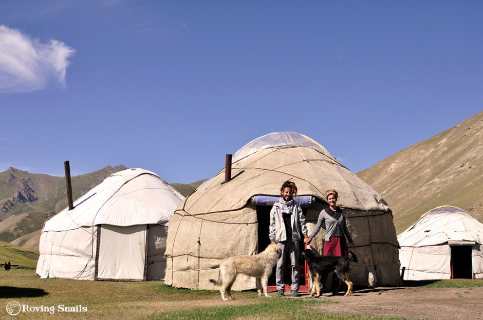 Travel friends_Dogs and Yurt in Kyrgyzstan copy