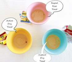 yeast tutorial