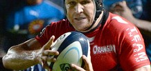 Matt-Giteau-for-Toulon_2988178