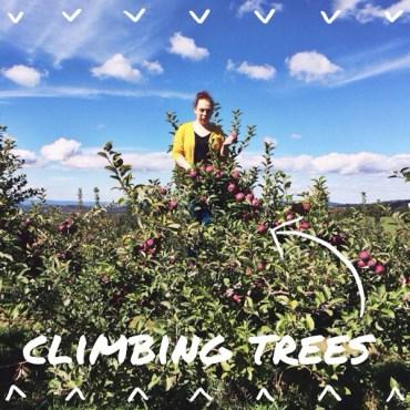 rukristin_applepicking-2