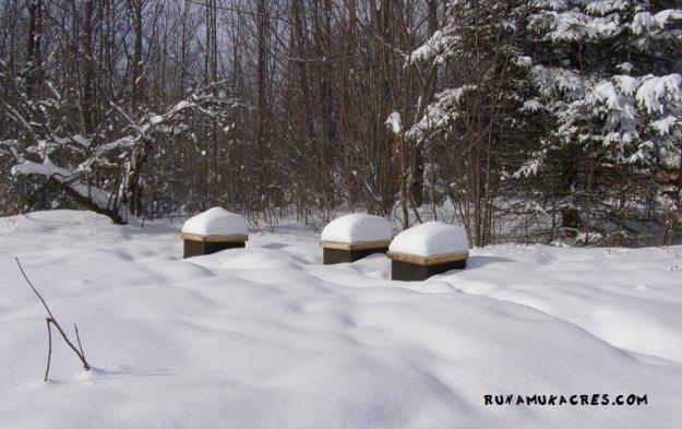 preparing your farm for winter