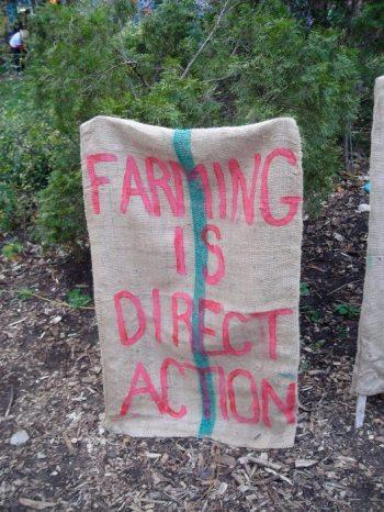 maine local food movement