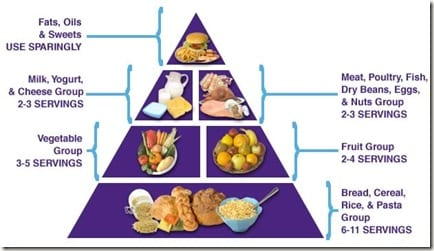 foodpyramid thumb All in a Bowl
