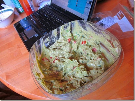 IMG 7518 thumb Guacamole and Dirty Hair, But not Guac in your hair