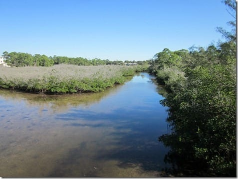 IMG 4005 800x600 thumb Trail Walk in Florida