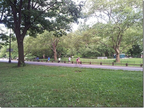 central park path thumb Pick a Bagel or Two