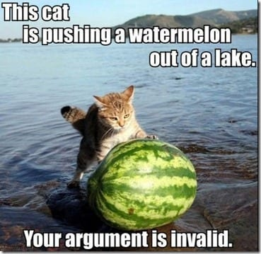 cat pushing watermelon thumb It's National Watermelon Day!