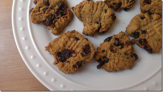 peanut butter protein cookies with cranberries 450x800 thumb No Running, Just Eating