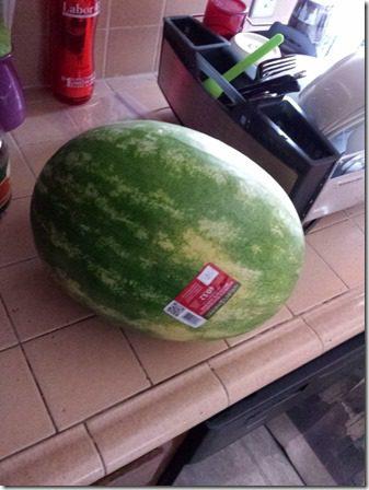 watermelon 600x800 thumb Can Cats Eat Pizza?