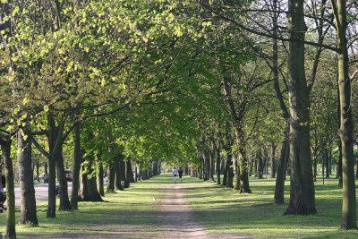 Regents Park Jogging Path photo: mpjashby via flickr