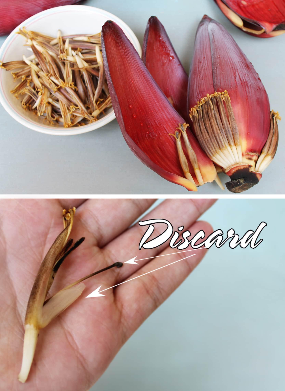 bananaflowershoots
